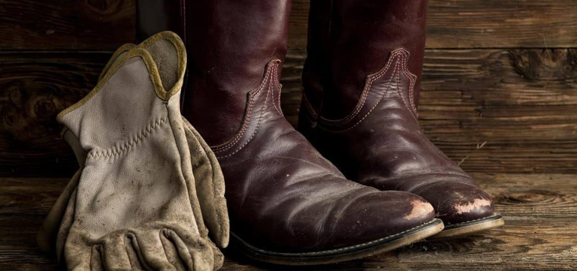 best snake boots for big calves
