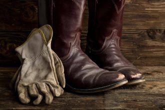 best snake boots for big calves